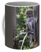 Stare Down Coffee Mug