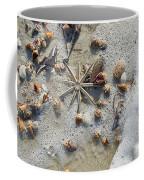 Starfish And Sea Shells Coffee Mug