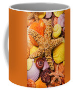 Starfish And Seashells  Coffee Mug