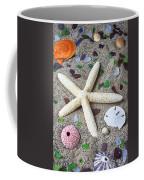 Starfish Beach Still Life Coffee Mug by Garry Gay