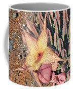 Starfish Cactus Coffee Mug