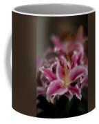 Stargazer Dream Coffee Mug
