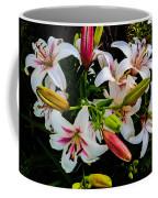 Stargazer Group Coffee Mug
