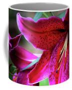 Asiatic Lily Coffee Mug