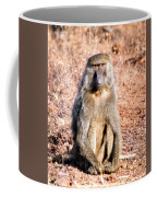 Staring Contest Coffee Mug