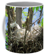Staring From Its Nest Coffee Mug