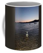 Starry Sky Over Lake Tahoe Coffee Mug