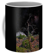 Star's Above Coffee Mug
