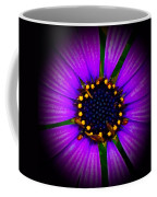 Stars In The Daisy Coffee Mug