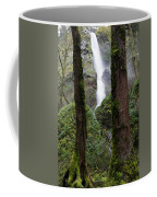 Starvation Creek Falls Between The Trees Coffee Mug