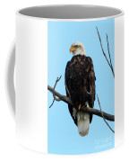 Stately Eagle Coffee Mug