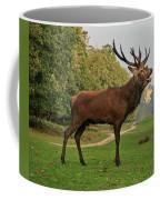 Stately Stag Coffee Mug