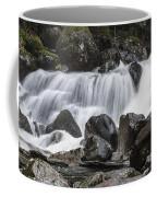 Stave Falls Coffee Mug