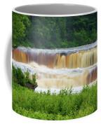 Steamy Lower Tahquamenon  Coffee Mug