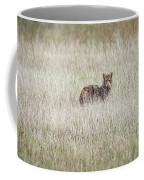 Steel Eyes Coffee Mug