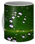 Steel Rain Coffee Mug