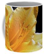 Stella D'oro - Day Lily Coffee Mug
