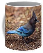 Stellar's Jay II Coffee Mug