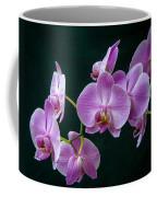 Stem Of Orchids  Coffee Mug