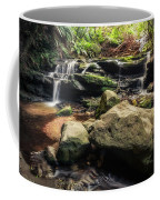 Stepping Cascade - Leura, Blue Mountains, Australia. Coffee Mug
