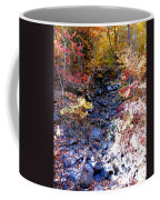 Stepping Stones At Autumn Forest Coffee Mug
