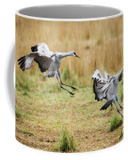 Stick The Landing Coffee Mug