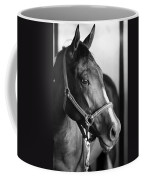 Horse And Stillness Coffee Mug