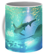 Sting Ray And Shark Coffee Mug