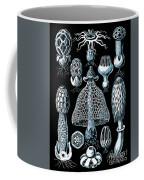 Stinkhorn Mushrooms Vintage Illustration Coffee Mug
