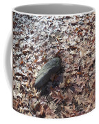 Stone And Leaves Coffee Mug