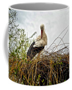 Stork Nest Coffee Mug
