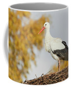 Stork On A Nest, Trees In The Background Coffee Mug by Nick Biemans