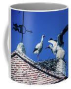 Storks Of Segovia Coffee Mug