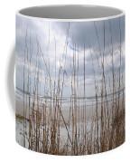 Storm Approach Coffee Mug