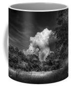 Storm Beyond The Meadow Coffee Mug
