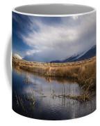 Storm Reflections Coffee Mug