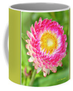 Strawflower Coffee Mug