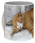 Stray Cat Sleeps On The Floor-1 Coffee Mug