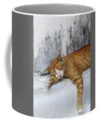Stray Cat Sleeps On The Floor-2 Coffee Mug