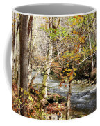 Stream In An Autumn Woods Coffee Mug