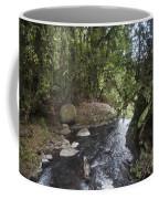 Stream In  Rainforest Coffee Mug