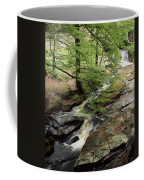 Stream In The Irish Countryside Coffee Mug