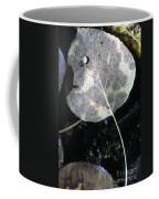 Stream Leaf Coffee Mug