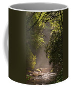 Stream Light Coffee Mug by Steve Gadomski