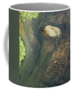 Stream Of Weeds IIi Coffee Mug
