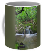 Stream Waterfall Coffee Mug