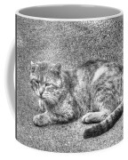 Street Bandit Coffee Mug