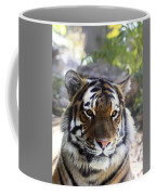 Striped Beauty Coffee Mug