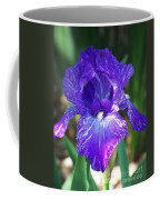 Striped Blue Iris Coffee Mug