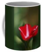 Striped Impatien In The Garden Shadows Coffee Mug